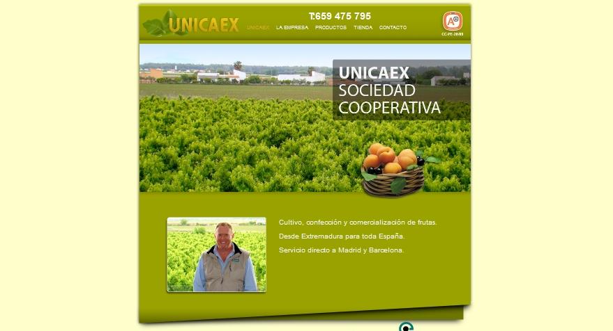 unicaex.jpg